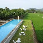 Infinity pool, mango trees, and rice paddies