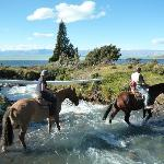 horses crossing the stream by the estancia