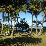 View from dinner table, lanai