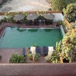 slimy pool