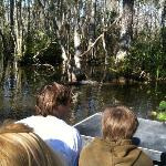 looking for alligators on air boat ride