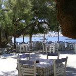 Vitsentzos Restaurant