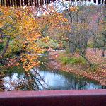 Scenic view from one of the bridges on the Horse carriage ride.