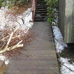 Wood pile on walkway