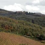Vescine - castelvecchi