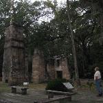 Bulow Plantation Ruins Historic State Park Foto