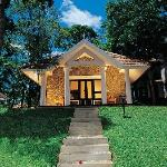 Treetop Cottage