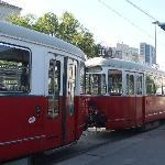 la fermata del tram