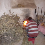 making bread in a communal earth oven
