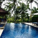 Pool overlooking rice paddys