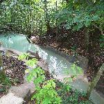 The natural springs pool.