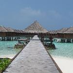 Camere overwater, pontile