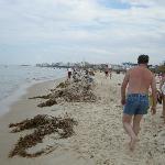 """het """"schone strand""""bij hotel marhaba"""
