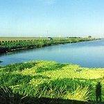 オキチョビー湖