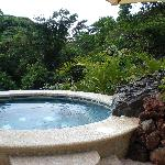 Amazing jungle hot tub