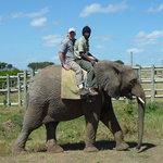 Enjoying some elephant time.