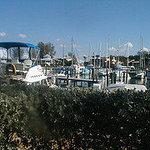 Photo of Cannons Marina