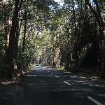 Enjoy your drive