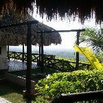View at finca