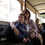Horse & Cart ride - great fun!