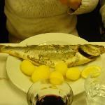 prato principal - Salmonette