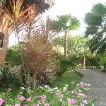 LaBarquita y su exotico jardin