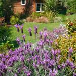 garden studio exterior