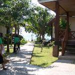 Uitzicht vanuit de bungalow