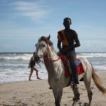 Horse Guy & a Dirty Beach!