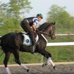 Early morning workout, Spring, 2008, at Keeneland Racetrack, Lexington, Kentucky, USA.