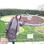 英國花園的日內瓦花鐘