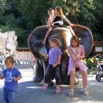 Tiergarten Schoenbrunn - Zoo Vienna Photo