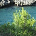 Foto de Eco di Mare