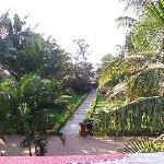 path to the beach restaurant