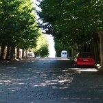Avenida General Flores Foto