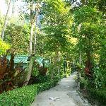 vue du bungalow 3