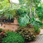 Beautiful and creative container gardens within our historic Conservatory
