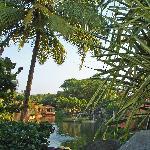 The lagoons