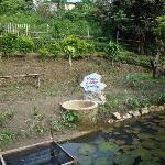 ue datu natural spring water