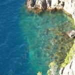 Beril en el Lago Traful... Mirador Traful