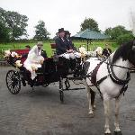 Arriving on Horse and Carriage