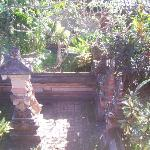 View from my Room's Balcony. A nice little temple.