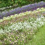 Sofierö gardens