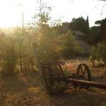 giardino a attrezzi