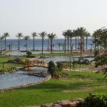 view of hotel grounds