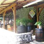 rum visit on site