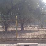 deer park against hotel shikha