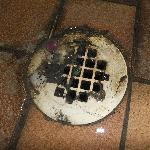 Drain in the indoor pool area