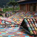 The multi coloured roof