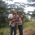 at the cedars